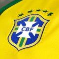 77ac903f2bff6 Camisa Seleção Brasil I 14 15 nº 10 - Torcedor Nike Masculina ...
